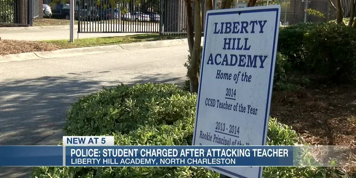 VIDEO: Charleston Co. student facing charges after attack sends teacher to hospital