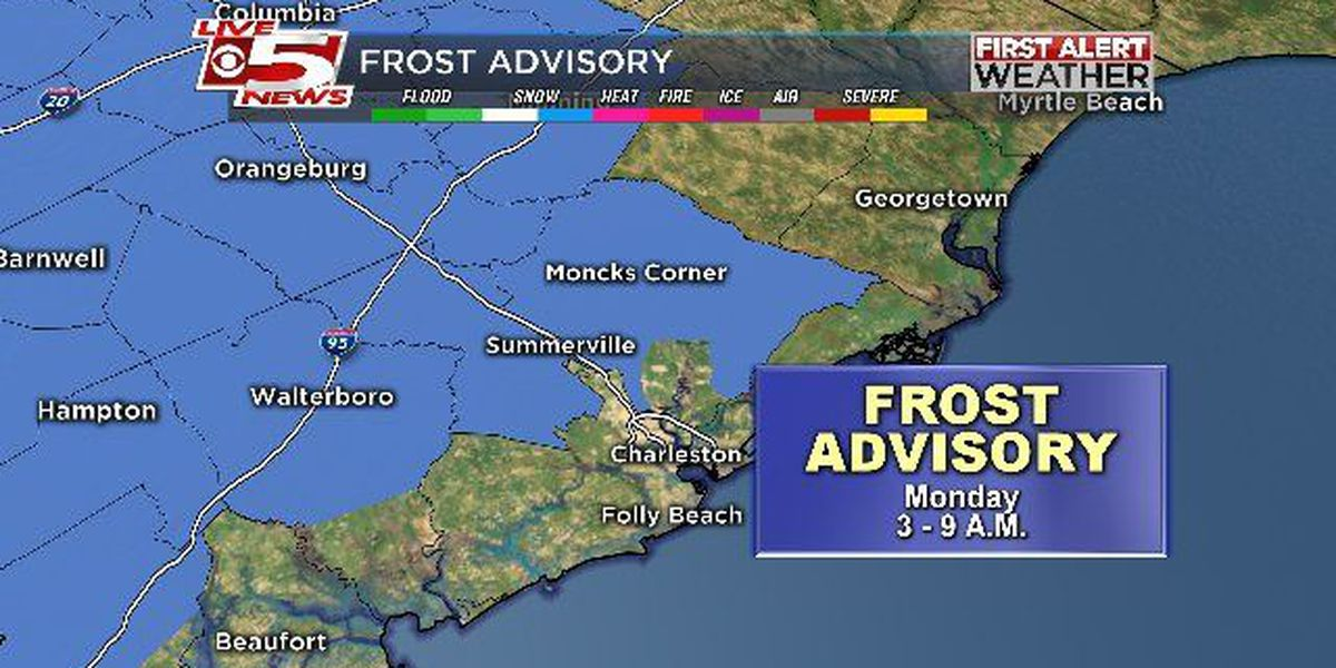 Frost advisory in effect for Charleston, southern Berkeley Counties early Monday morning