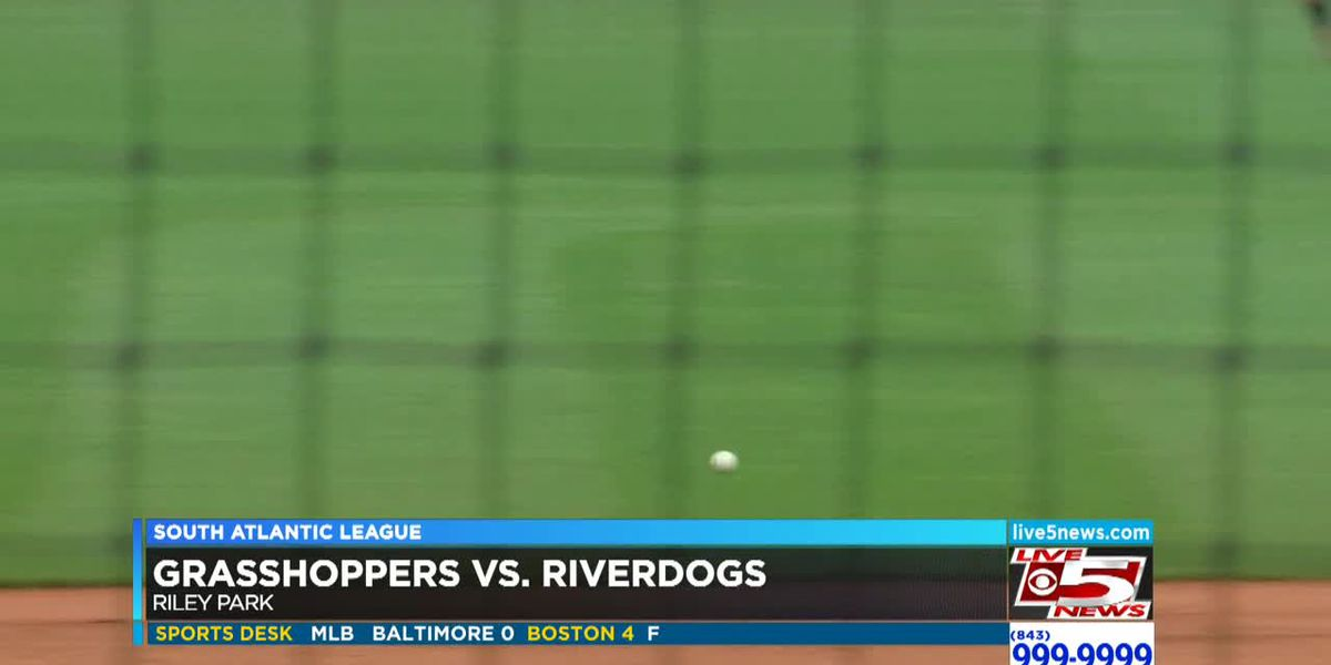 VIDEO: Riverdogs drop series finale to Grasshoppers