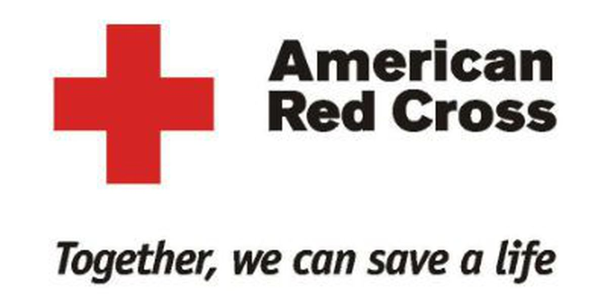 Red Cross helps family after James Island house fire