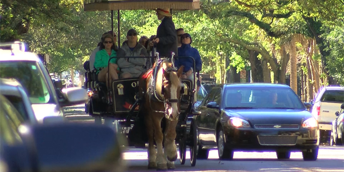 City of Charleston appeals tour guide licensing ruling