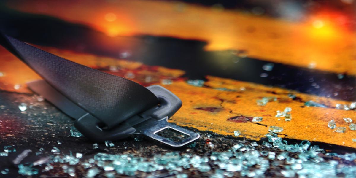 SCHP investigating fatal collision on US-321 in Orangeburg Co.