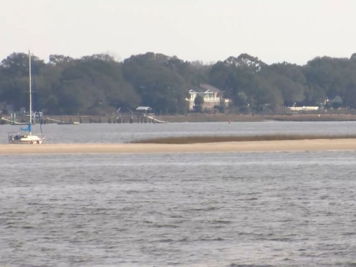 Charleston Army Corps announces new study to find possible alternate crab bank solution