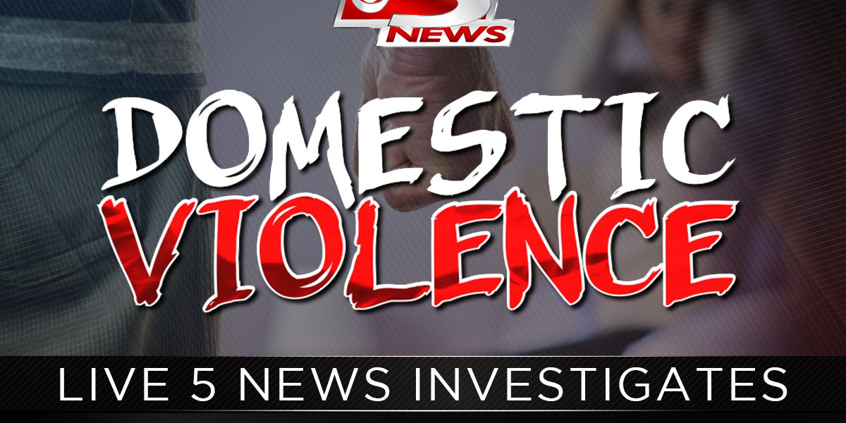 Live 5 Investigates: More than half of domestic violence offenders get lesser charges