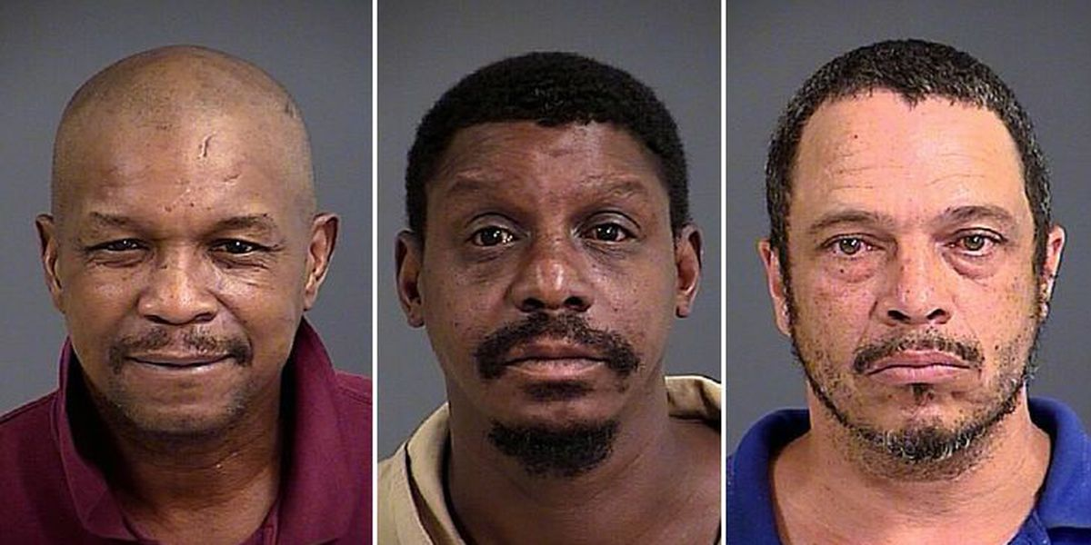 Police: Copper thieves caught red-handed at Mt. Pleasant hotel