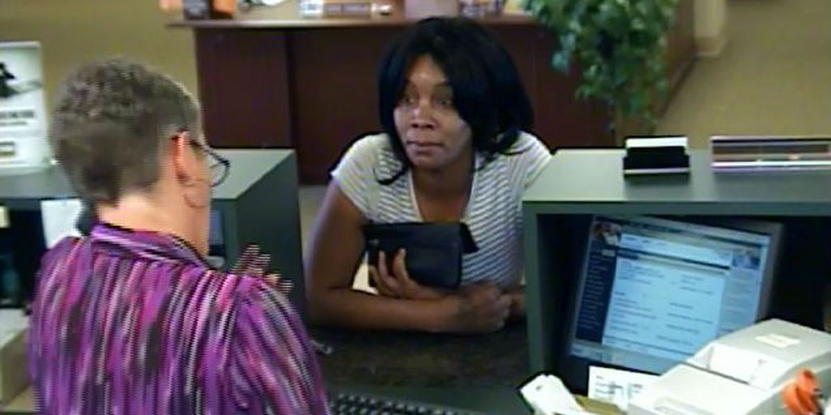 Georgetown Police searching for check fraud suspect