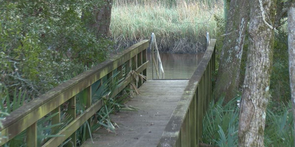Summerville looking to purchase 'gateway property' to future 34-acre park