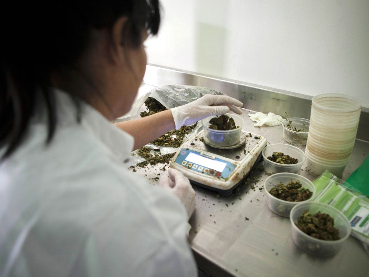 Israel to allow medical marijuana exports