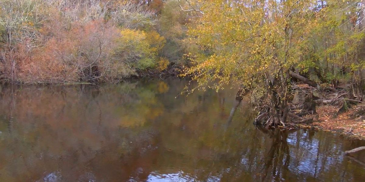 SCDNR leads work to protect the state's water resources over the next 50 years