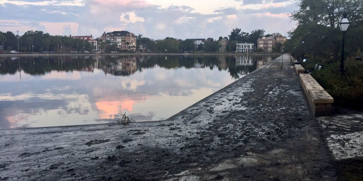 Volunteers to clean up Colonial Lake Thursday