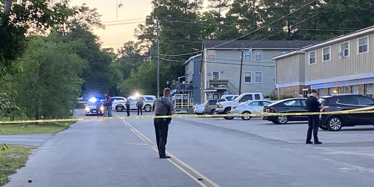 Police investigating shooting on Miles Jamison Road in Summerville