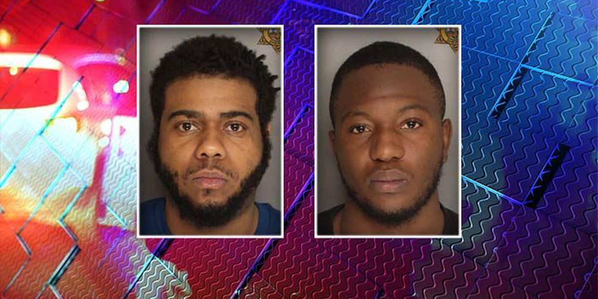 Deputies: 2 arrested on drug, weapon charges