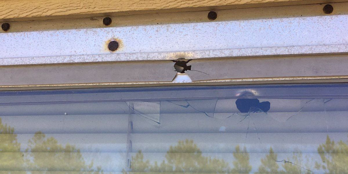 Sleeping family escapes barrage of bullets fired into home