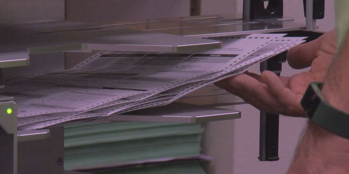 SC election officials take next steps to wrap up election results; recounts and runoffs expected