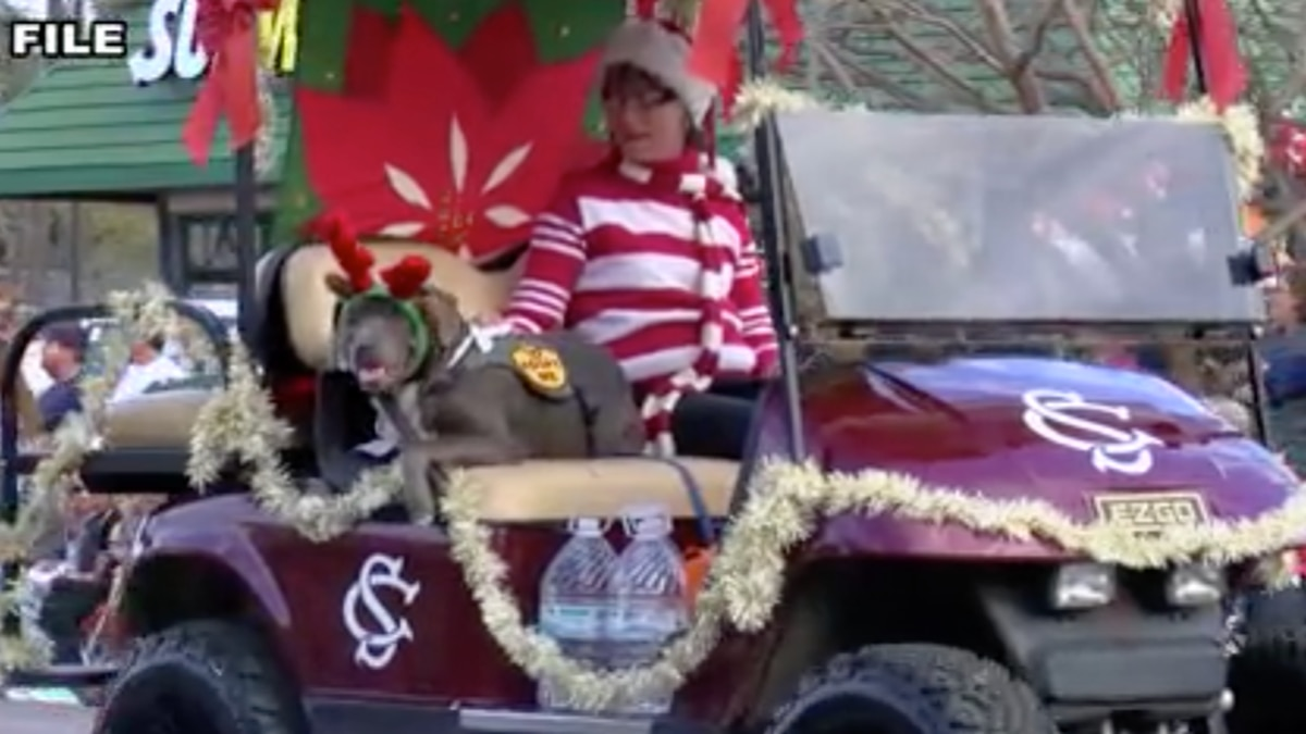 Lowcountry towns decide whether to host Christmas parades