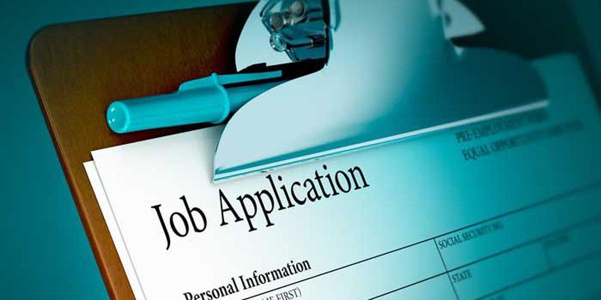 More than a dozen companies hiring at job fair in the Lowcountry