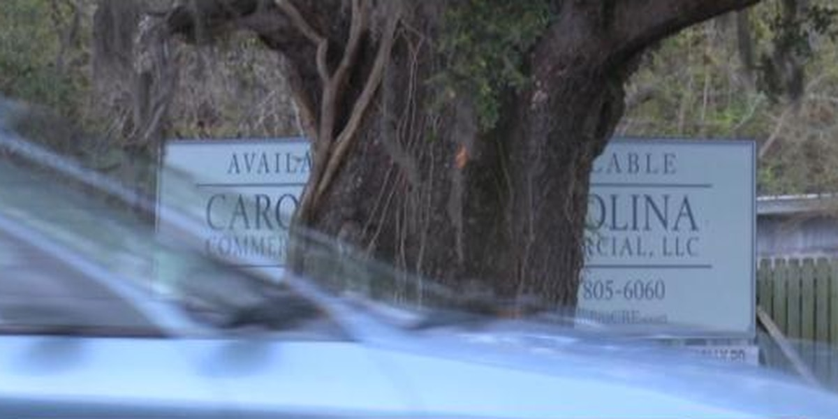 Residents voice environmental concerns about proposed car wash on James Island