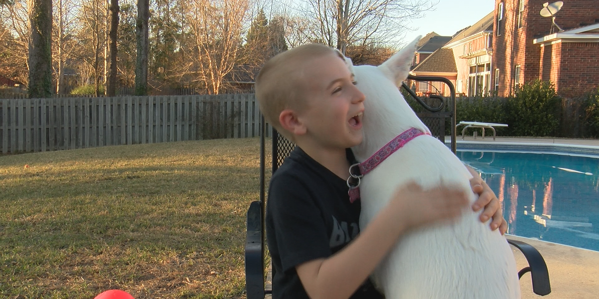 Local boy wins ASPCA Kid of the Year Award after working to save over 1300 dogs