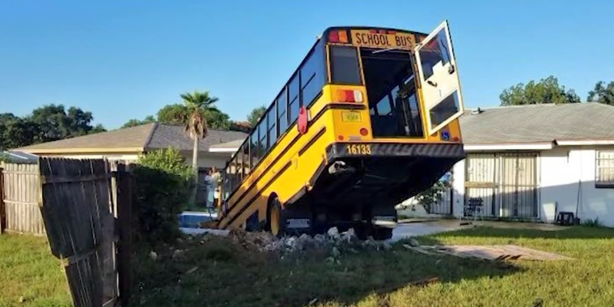 School bus carrying 9 children crashes into backyard pool