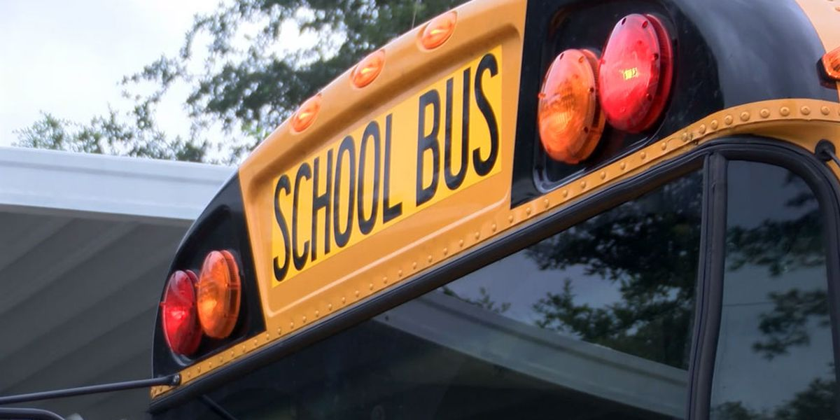 Report: Bus company CCSD wants to hire considering dropping school bus division
