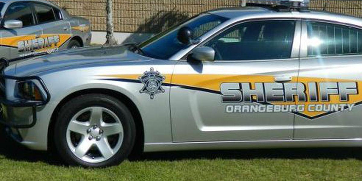 Orangeburg man faces 45 counts of church vandalism