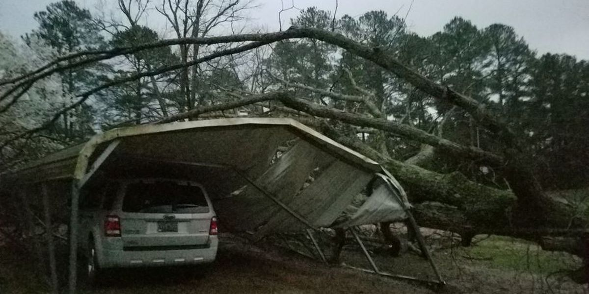 At least 14 dead as possible tornadoes hit U.S