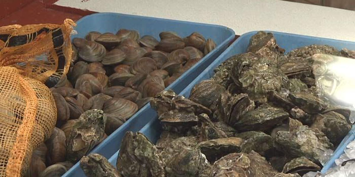 DHEC to reopen some Charleston Co. shellfish harvesting areas