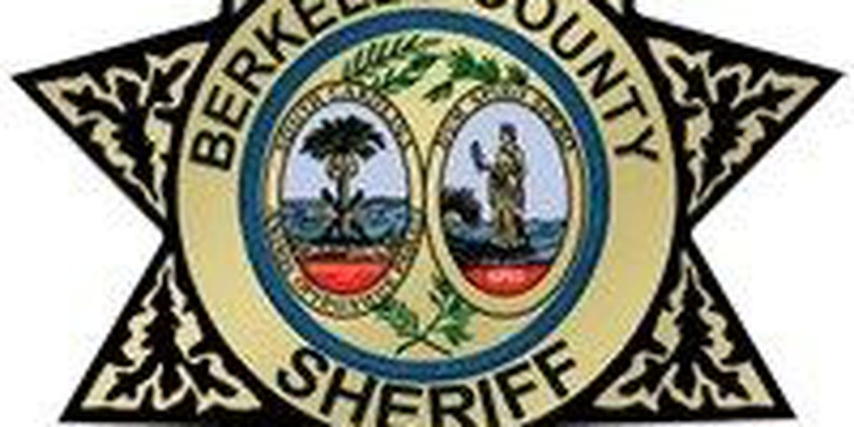 20 arrests made after operation by Berkeley County deputies