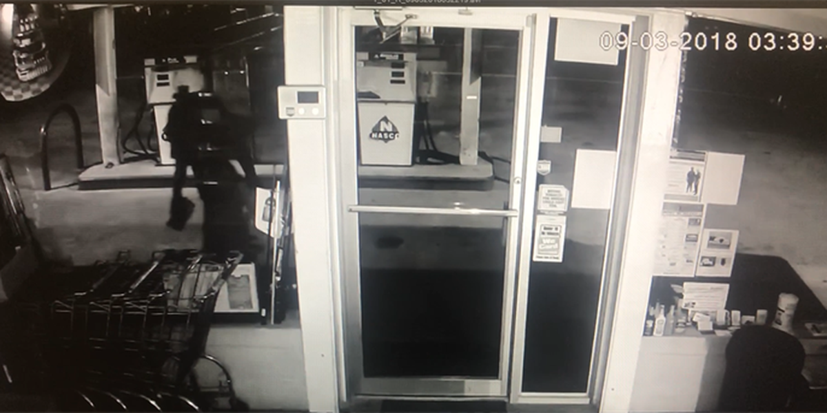 Georgetown Co. Sheriff's Office searching for break-in suspect