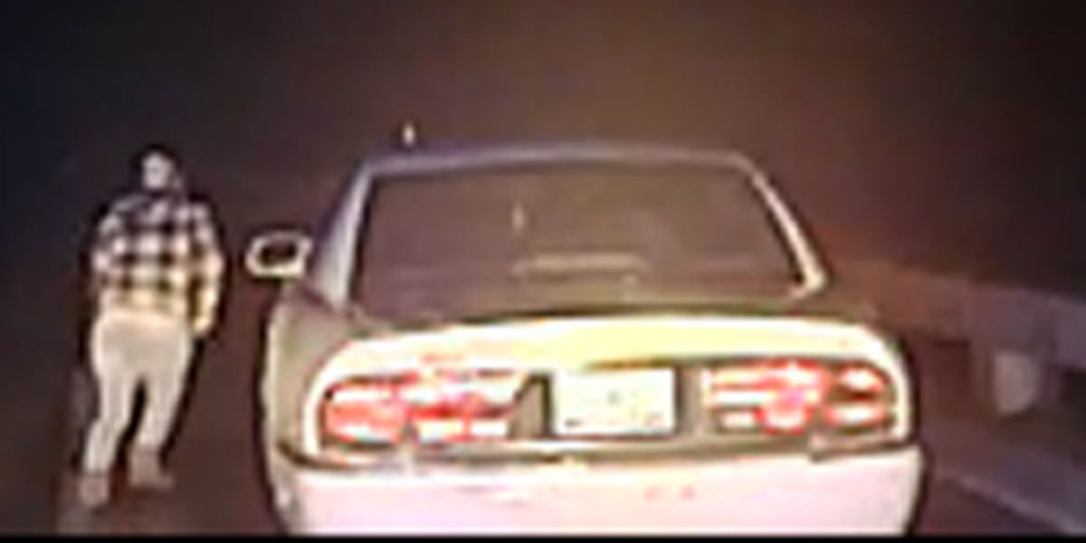 Dashcam video shows suspect jump off overpass in Moncks Corner to elude police