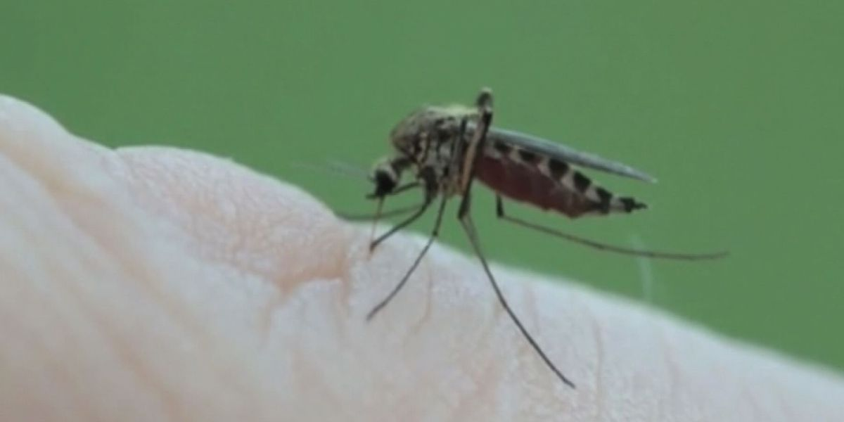 Richland County beating back mosquitoes after West Nile is found