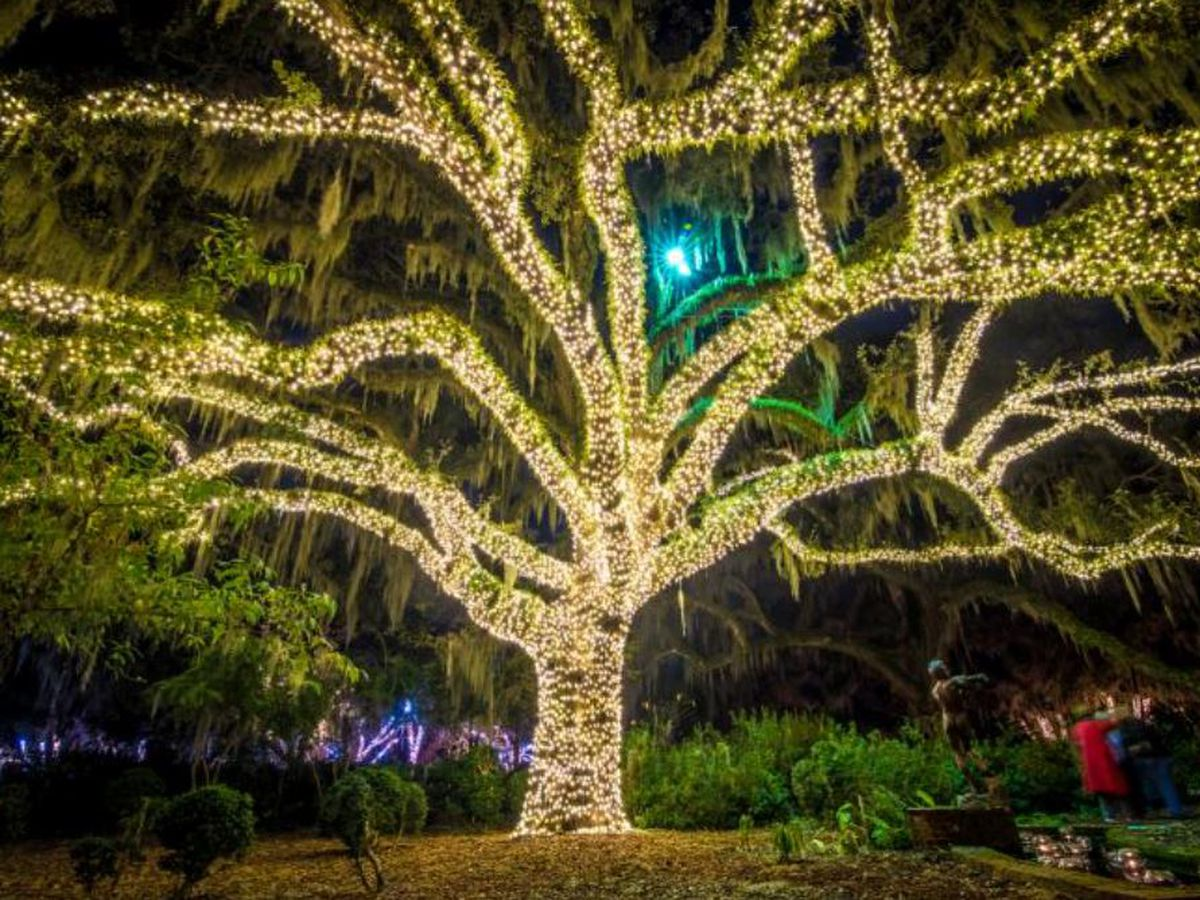 Brookgreen Gardens annual Nights of a Thousand Candles