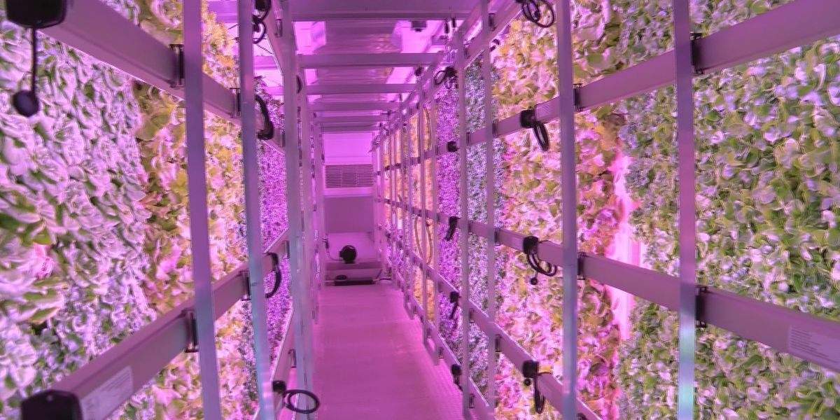 The Citadel's container farm is first of its kind for military college