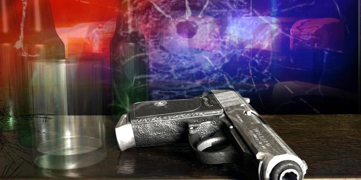 Deputies: 2 shot at Colleton County club