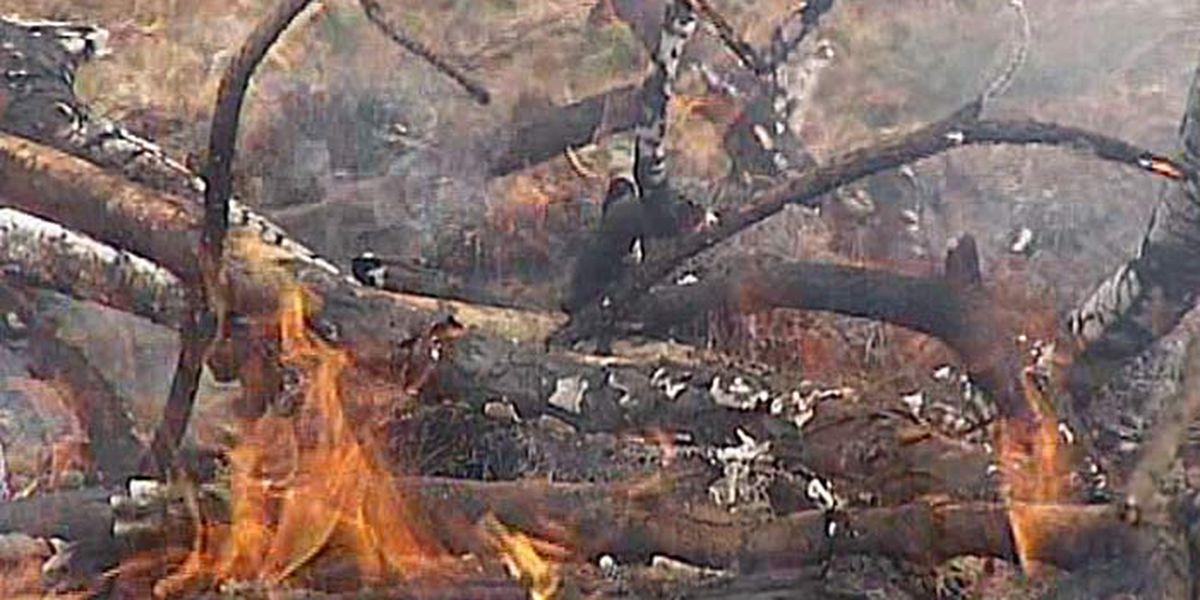 Statewide burn ban set as precaution in pandemic
