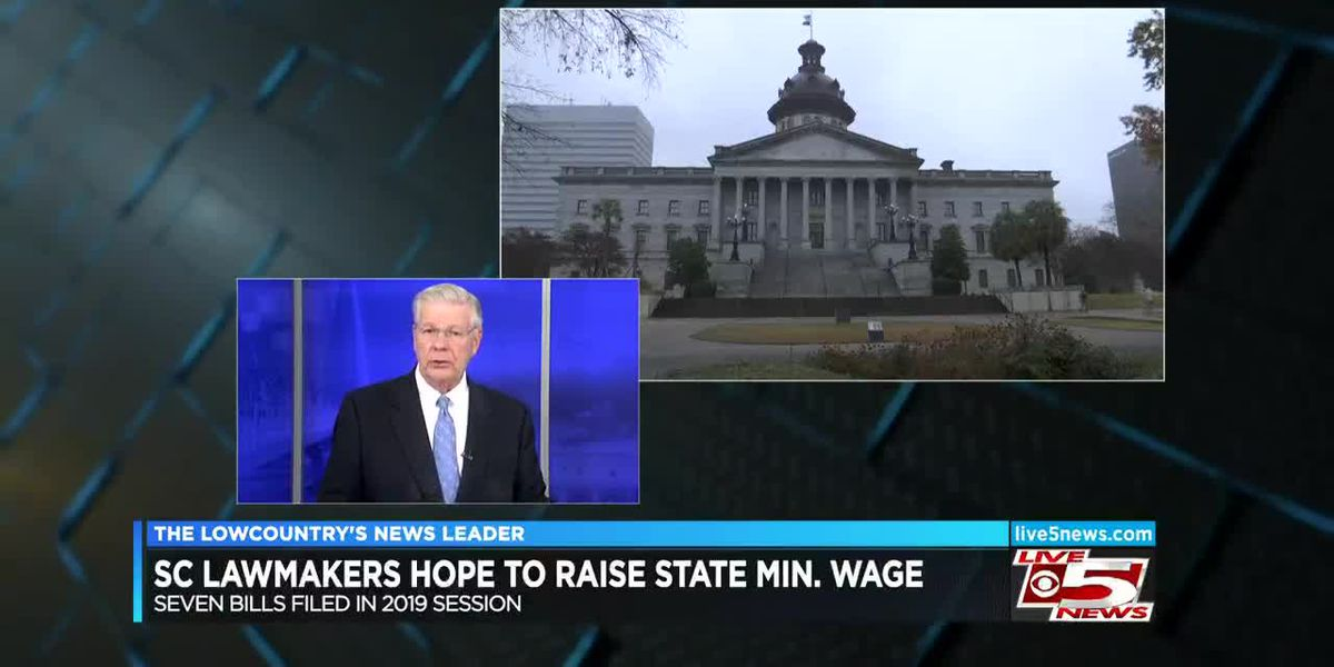VIDEO: SC lawmakers hope to raise state's minimum wage