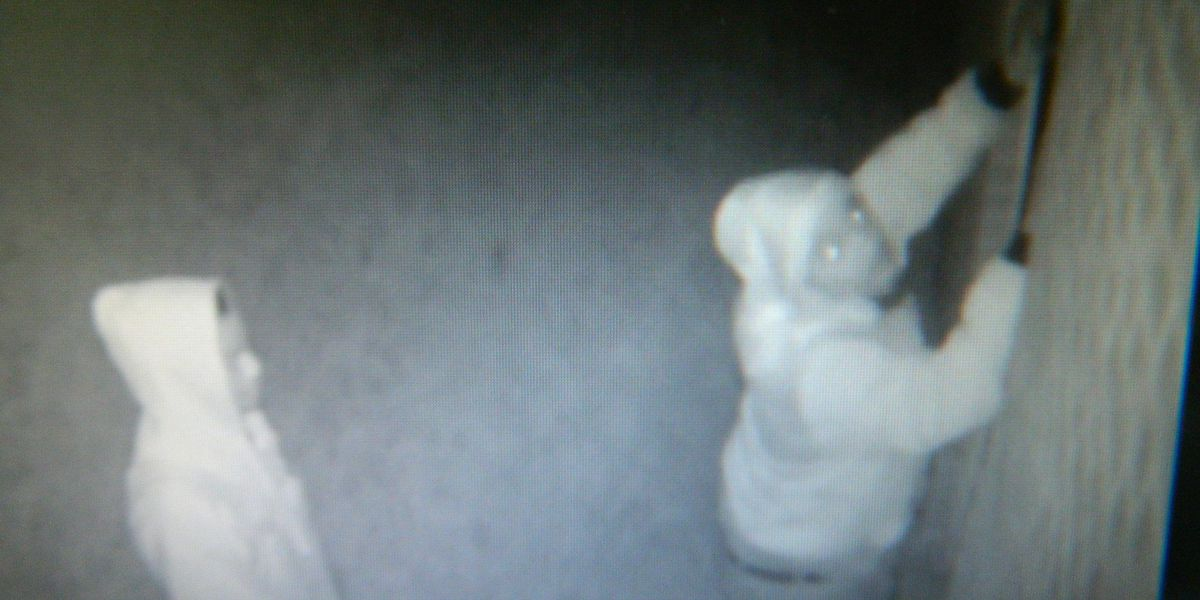 Wanted: Duo caught on camera stealing equipment from Orangeburg business