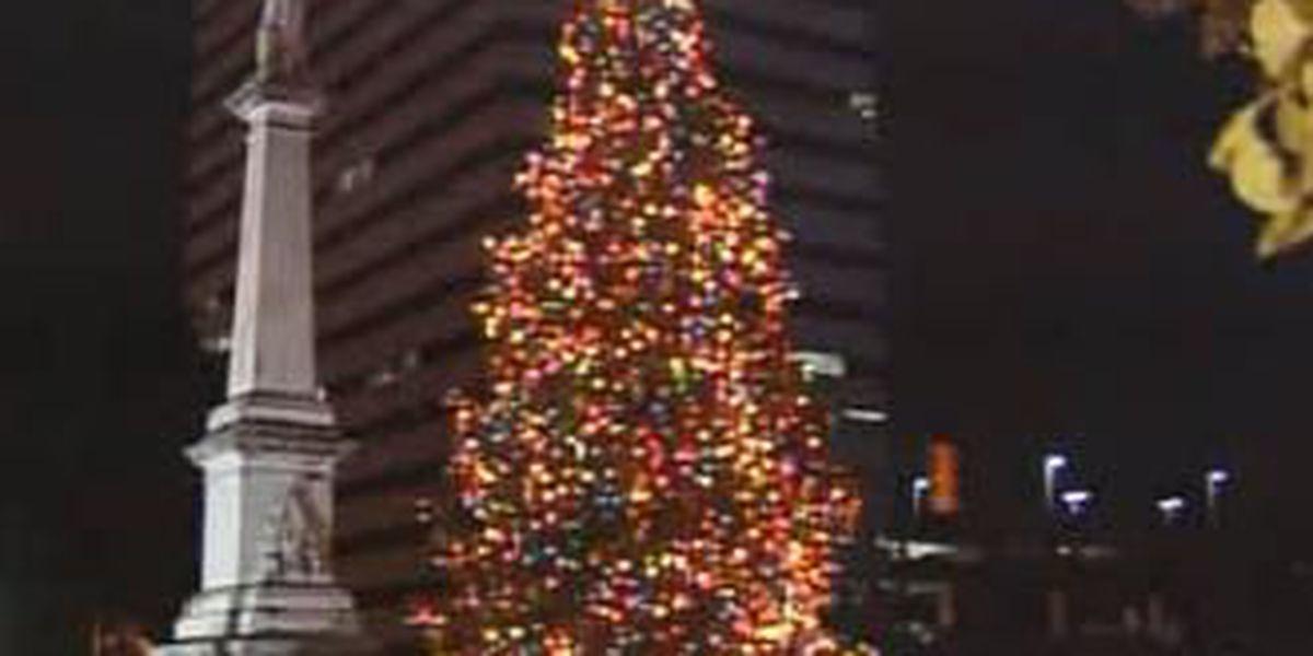 Haley to kick off holidays with 48th tree-lighting