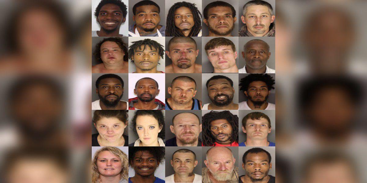 Dozens charged in South Carolina drug roundup