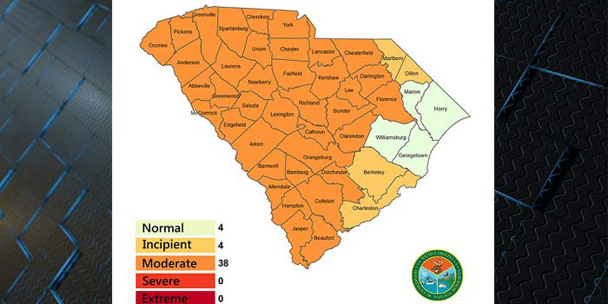 Lowcountry counties reclassified with worsening drought conditions