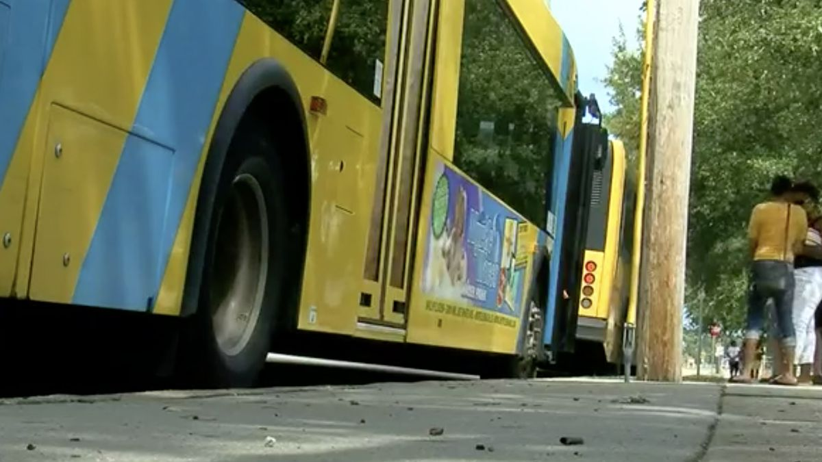 Fares suspended on Georgetown County's public bus service