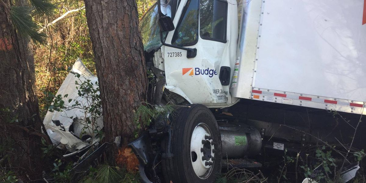 Three hospitalized after box truck crashes into tree