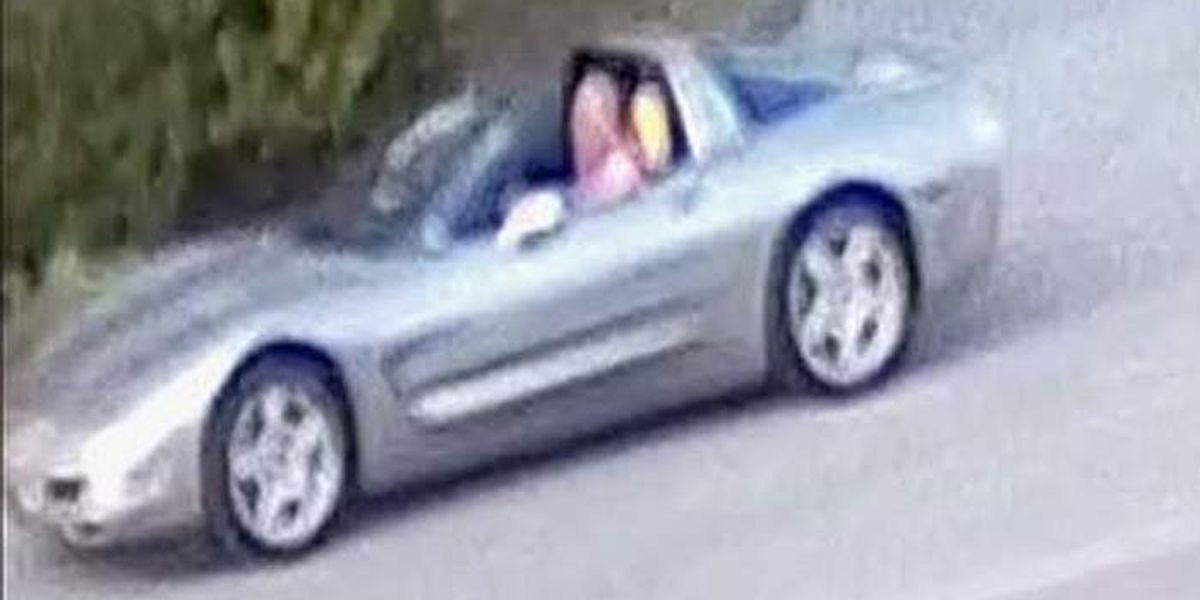 Police release surveillance stills in search for gunman