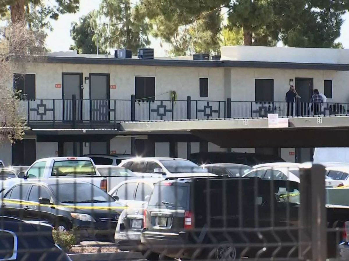 Police: Woman kills her 2 kids with meat cleaver in Arizona