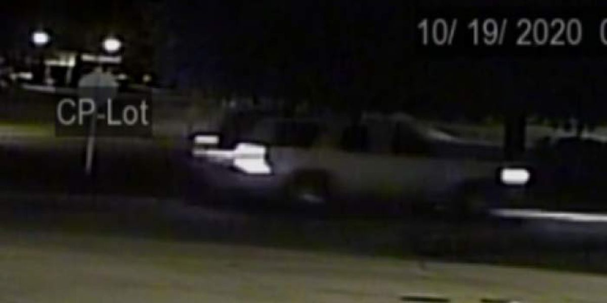 Troopers release surveillance pics of SUV in fatal hit-and-run