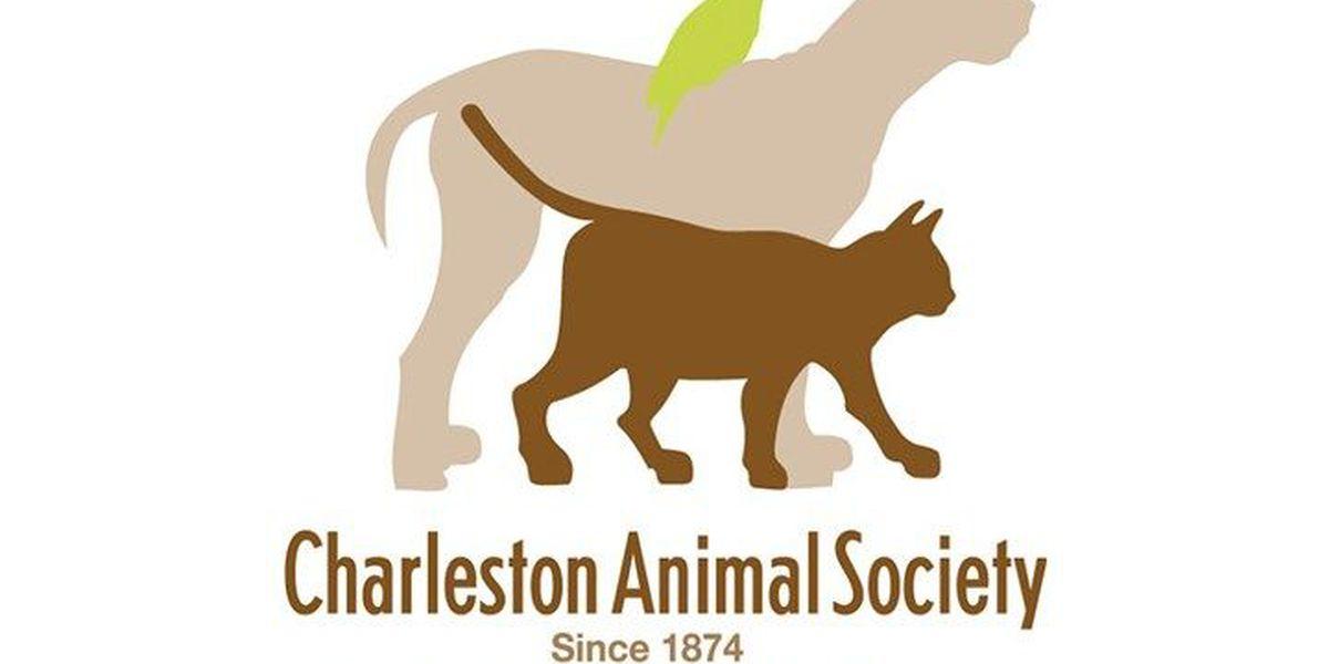 Charleston Animal Society celebrating 142nd anniversary