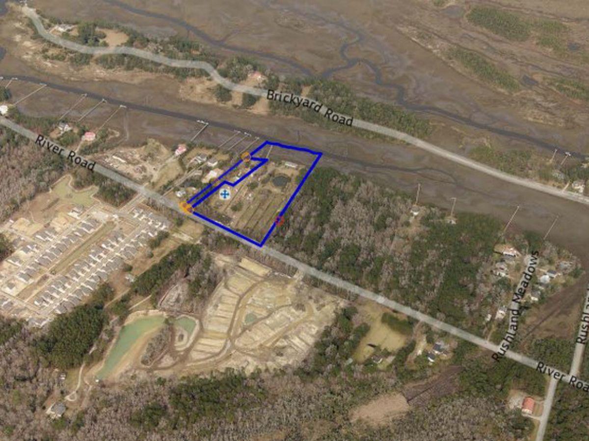 Developers seeking new John's Island housing development with water access and garden amenities