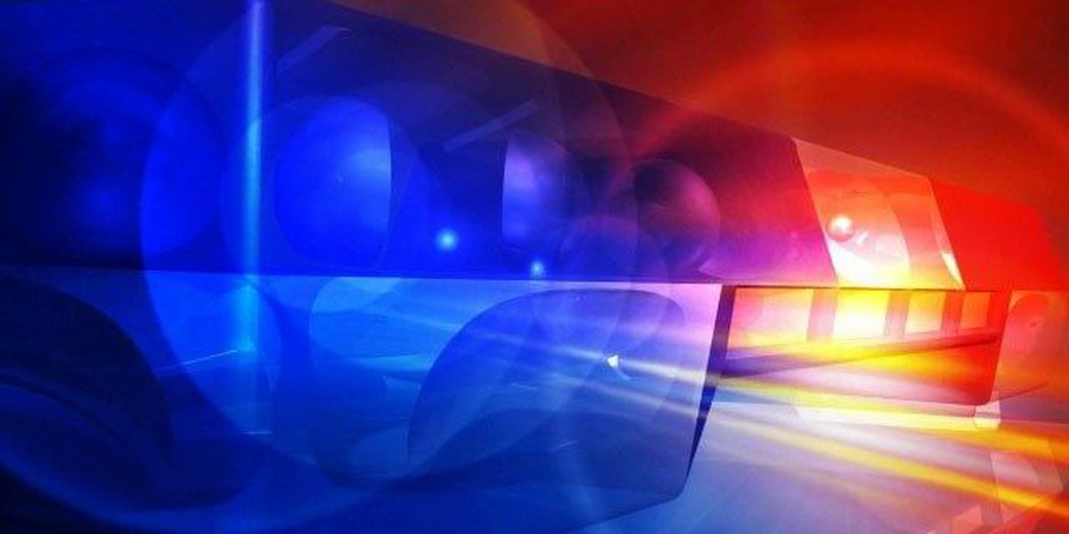 North Charleston Police investigating a shooting on Harvey Avenue