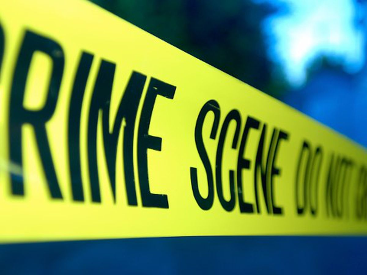 Williamsburg Co. detectives investigating deadly double shooting