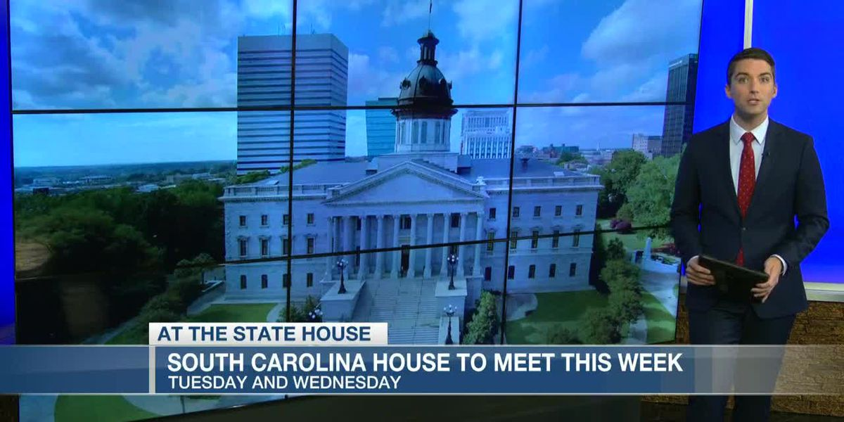 VIDEO: S.C. House members to meet at Statehouse this week